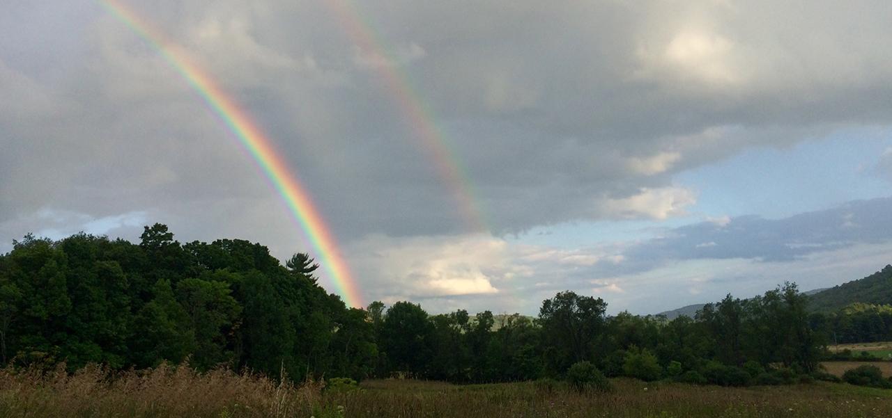 double-rainbow 2016