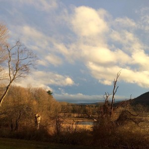 What an odd winter this has been. But very grey, as usual, until late-afternoon when -- sometimes -- the clouds part. #goldenhour #nosnow #artscolony #artistcommunity #saltonstall #writingretreat #flx #ithaca
