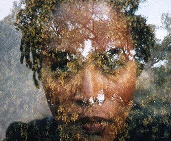Felicia Megginson (2002)