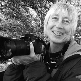 Kathy Morris (1998)