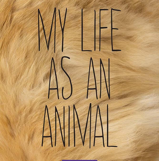 Laurie Stone ('05) Publishes My Life as an Animal